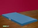 Weiche Gymnastik - und Turnmatte 10 cm ,2x1 m,Artikelnummer  238
