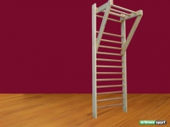 Set (Swedish Ladder +wood pull up bar,code 272-swedish ladder