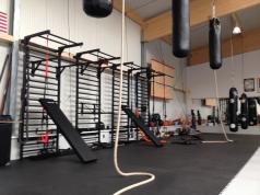 Metal Wall Bars, 265X100 cm,19 rungs, code 231-Gladiator 90