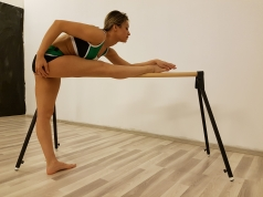 Portable Ballet Barre,53.93 in.,code 113-Mobil