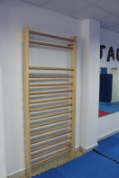 Wall Bars kinetotherapy, 240x90 cm, code 262